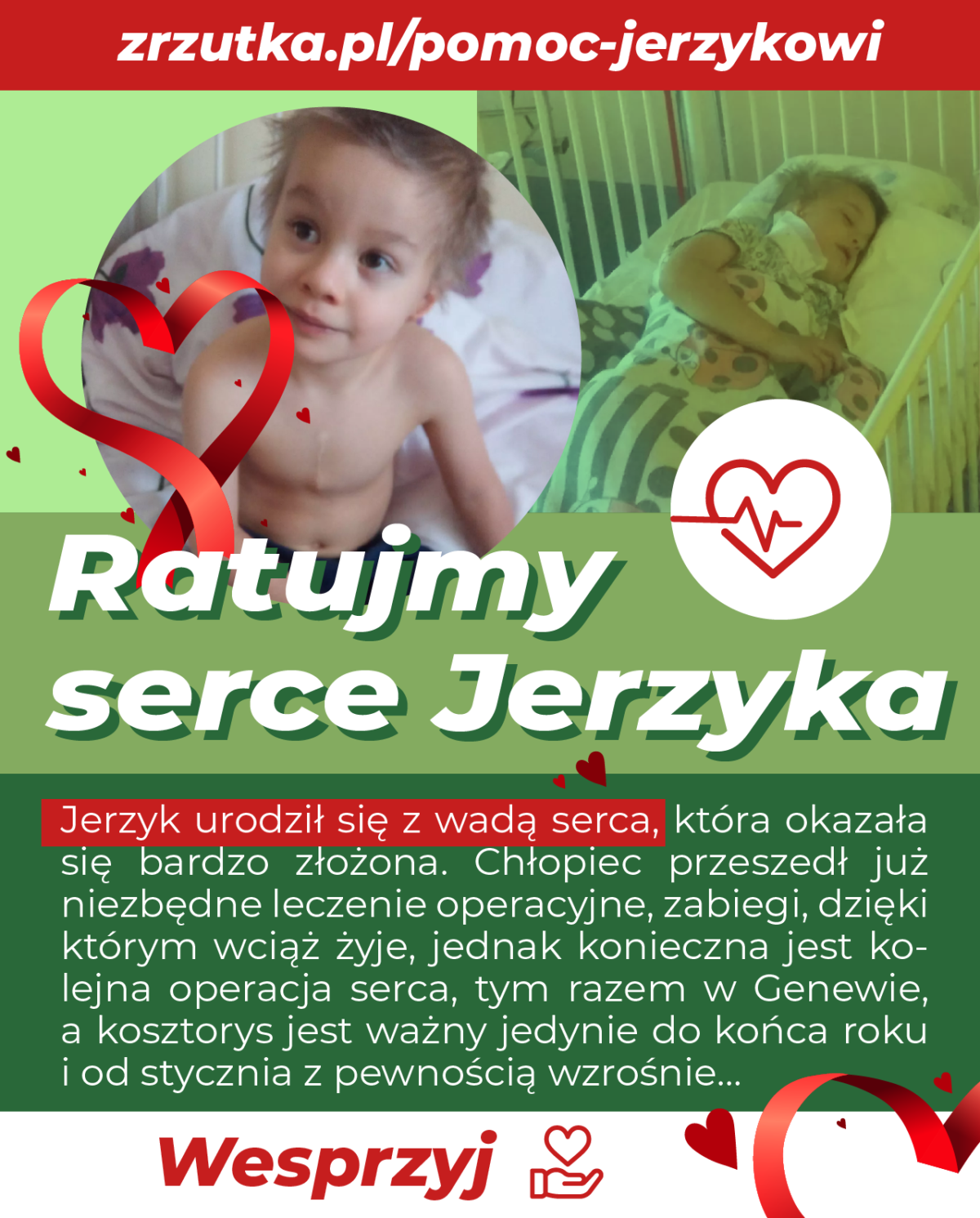 Zbiórka funduszy na operację dla Jerzyka